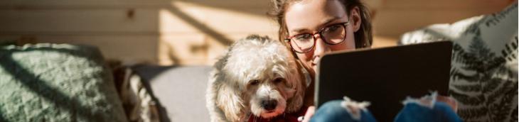 Les Danois propriétaires de chiens vont trouver un endroit hospitalier pour les accueillir
