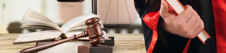 appréciation souveraine juge fausse déclaration intentionnelle