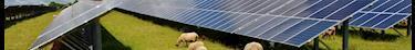 ABC : bilan sur le bâtiment collectif écologique construit par Bouygues en 2020