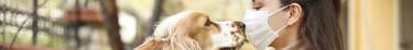 Les animaux de compagnie peuvent-ils transmettre le Covid-19 ?