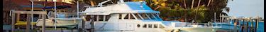 Les bateaux logements séduisent davantage d'acheteurs souhaitant vivre sur la Seine