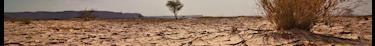 Le régime des catastrophes naturelles nécessite une réforme pour mieux protéger contre la sécheresse