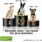 Mutuelle Chien Chat