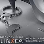 50 nuances de Linxea
