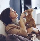 L'attachement des Français à leurs animaux de compagnie est nettement perceptible
