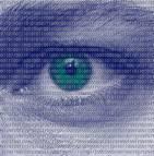 fraude assurance big data