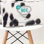 Box chien chat Assur O Poil