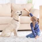 Un chien comme aide-soignant pour un patient souffrant d'un trouble du langage