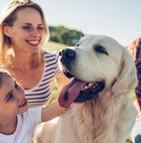 Les chiens apportent plus de joie à leurs propriétaires que les autres animaux