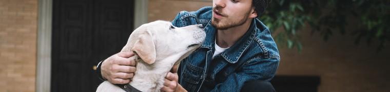 Les chiens sont capables de reconnaître les mots qu'ils ont l'habitude d'entendre
