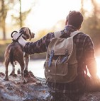 Les chiens comme leurs maîtres souffrent de problèmes de fertilité