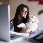 Il existe un lien entre avoir un animal de compagnie et réussir au travail