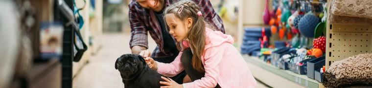Le marché des animaux de compagnie : victime de son succès