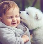 Prévenir les allergies en habituant l'enfant à la présence d'animaux le plus tôt possible