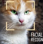 La reconnaissance faciale devient un outil efficace pour préserver les animaux