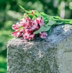 L'UFC-Que-Choisir dénonce les coûts élevés des obsèques