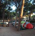 Les vacanciers affluent en masse dans les campings en Indre-et-Loire
